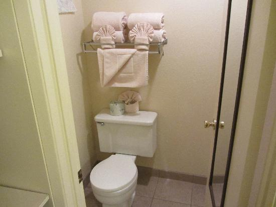 BEST WESTERN PLUS San Marcos Inn: Bathroom 2