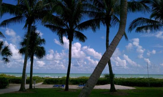 Holiday Inn Sanibel Island: This picture is just a glimps of this hotels beauty..