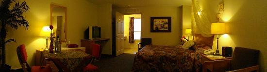 Avalon Inn: King Room
