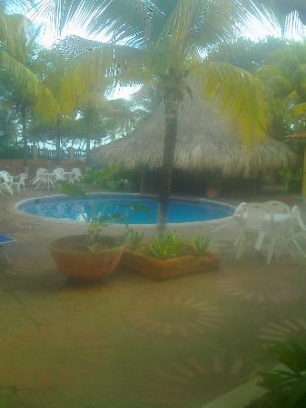 Hotel Golden Paradise : golden paradise