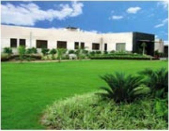 Central Plaza: Property