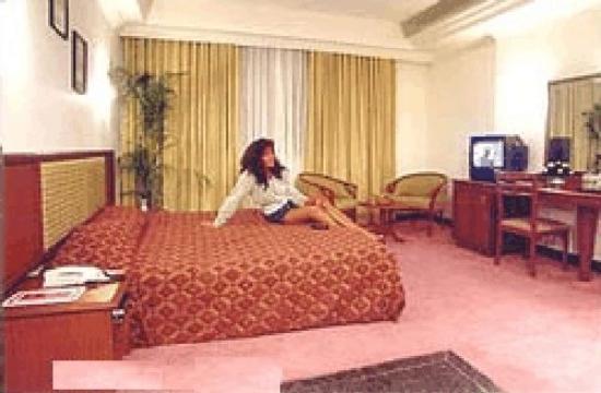 Museum Inn: Room