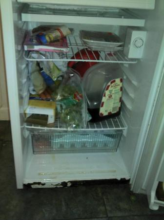 Green Cove Springs Inn: rusty refrigerator