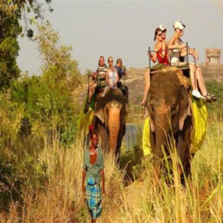 Cinnamon Lodge Habarana: Elephant Ride (Small )