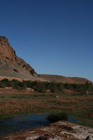 Tan-Tan, Marruecos: Il pranzo all'oasi