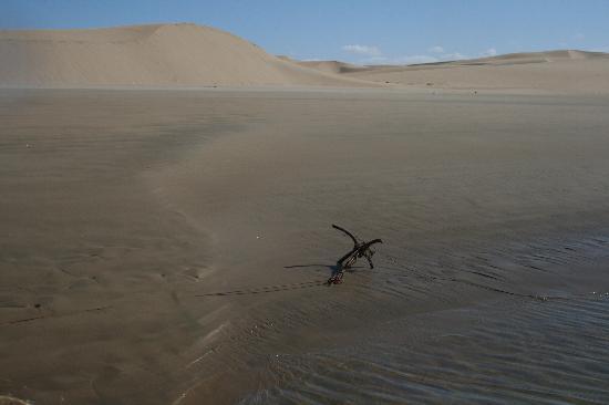 Tan-Tan, Marrocos: te nel deserto