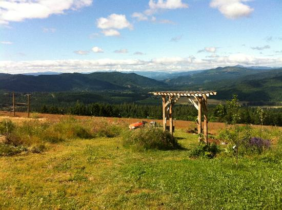 Husum Highlands Bed and Breakfast: Fabulous view taken standing at the back of the property