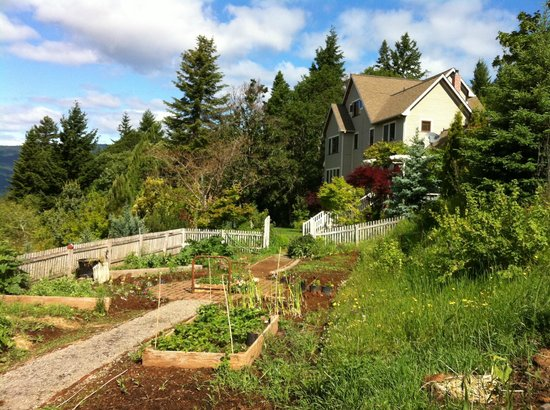 Husum Highlands Bed and Breakfast: View of the back of the property with their garden in the foreground