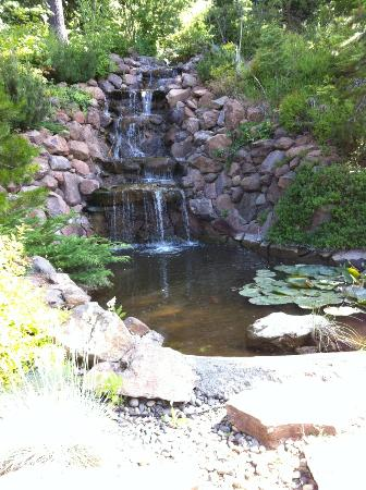 Husum Highlands Bed and Breakfast: Cute waterfall near the front of the property as you pull in