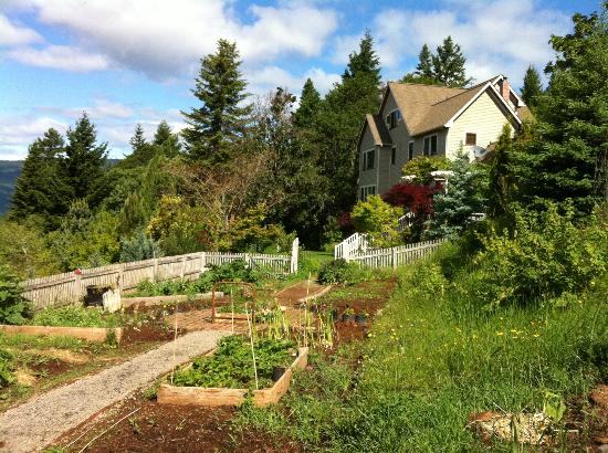 Husum Highlands Bed and Breakfast: The back of the property with their garden in the foreground