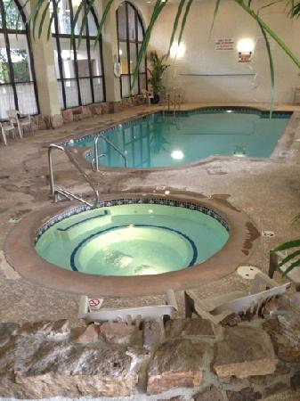 Embassy Suites by Hilton Denver Southeast: Pool area