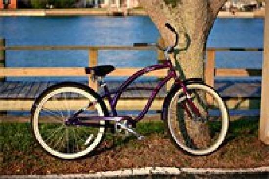Island Action Sports: Bike Rental
