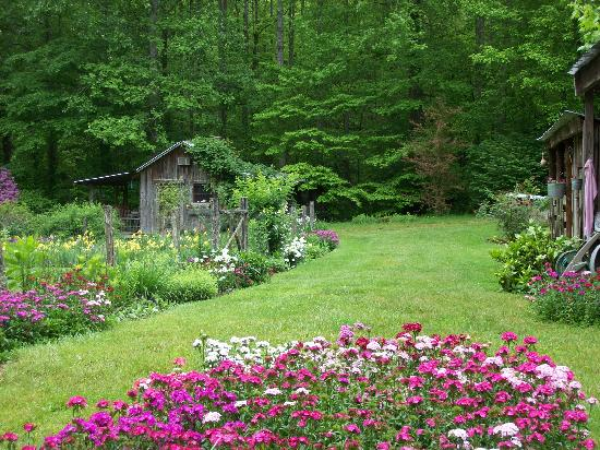 Garden of Eden Cabins: garden area in spring