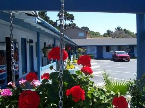 Blue Lagoon Inn: Exterior