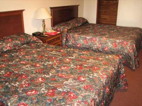 Yankee Village Motel : Guest Room