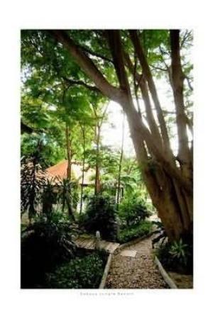 Sabaya Day Spa and Jungle Resort: Exterior