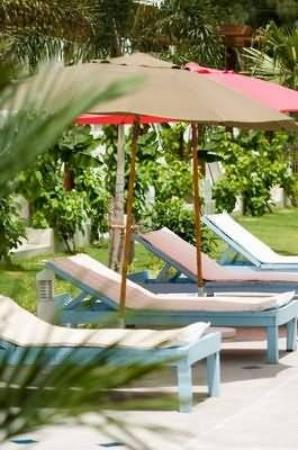 Sabaya Day Spa and Jungle Resort: Other