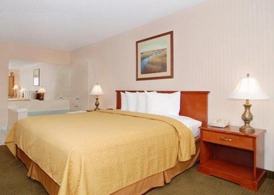 Econo Lodge Inn & Suites: CAGKingbedwrpl