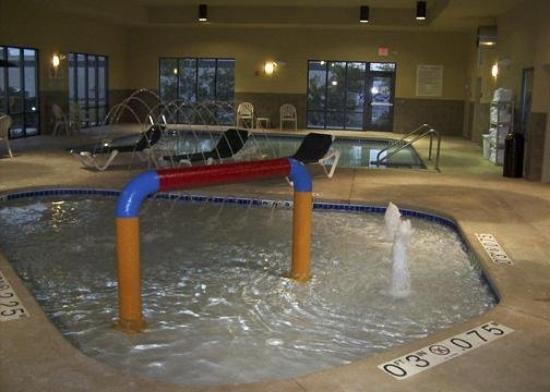 Comfort Suites Oshkosh: Spa