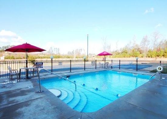 Comfort Suites Clayton: Pool