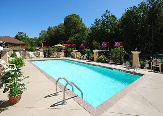 Comfort Suites Olive Branch: Pool