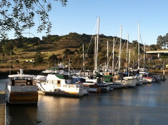 Sheraton Sonoma County - Petaluma: Cove next to hotel