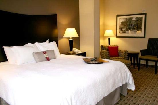 Hampton Inn & Suites Montgomery-Downtown: Guest Room