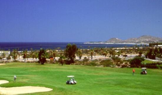 Ocean Club Los Cabos: Other