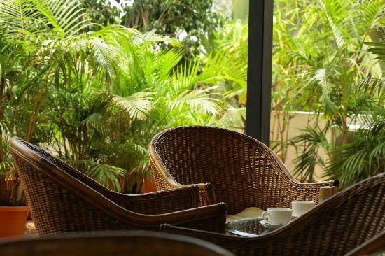 juSTa Off MG Road, Bangalore: Quiet Seating amidst Greenery