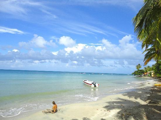 Hotel Restaurante Miss Elma : Fresh Water Bay view