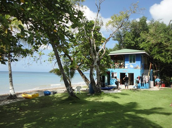 Hotel Restaurante Miss Elma : Felipe Diving - Fresh Water Beach