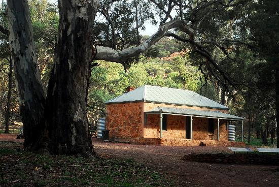 Wilpena Pound: Hills homestead