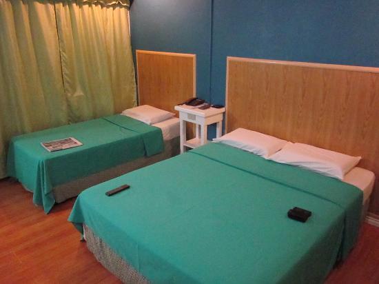 Fem's Vines Pension House : suite room