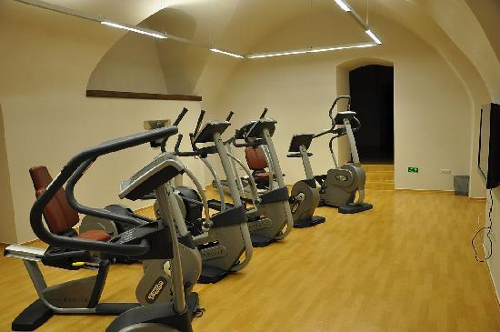 Chateau Heralec - Boutique Hotel & Spa by L'OCCITANE: Gym