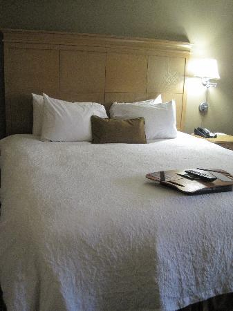 Hampton Inn & Suites Albany - Downtown: bed