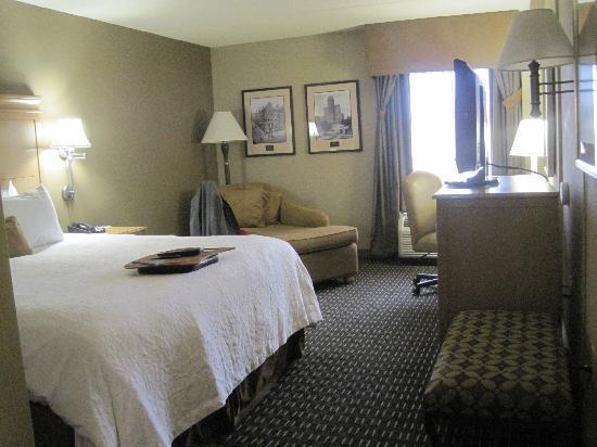 Hampton Inn & Suites Albany - Downtown: room