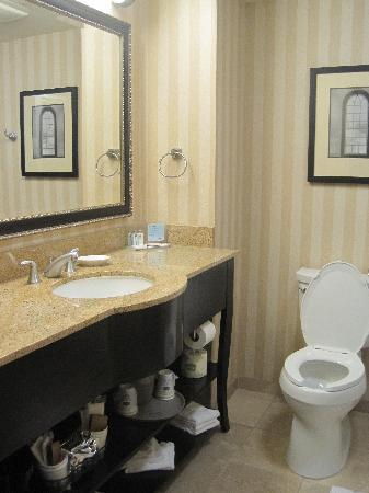Hampton Inn & Suites Albany - Downtown: bathroom