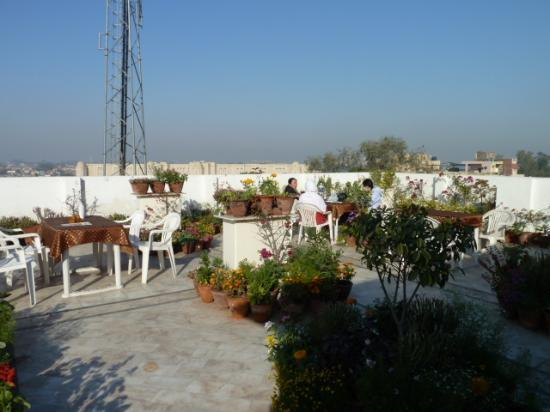Hotel Sheela Inn: rooftop restaurant
