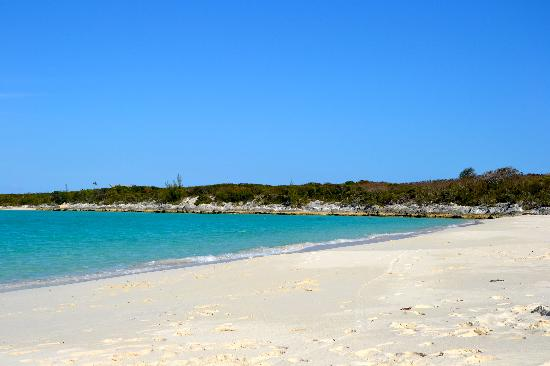 Paradise Bay Bahamas: Plage devant Paradise Bay Cottages