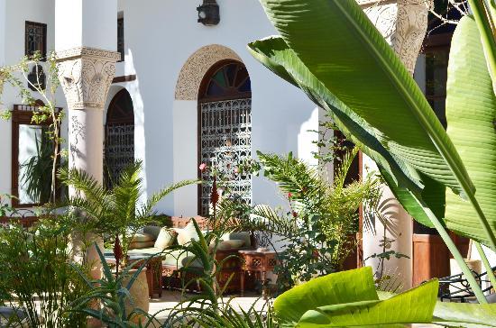 Ryad Mabrouka: garden