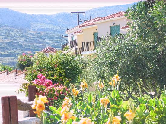 Livadaki Village Hotel: Livadaki Village Mountain View