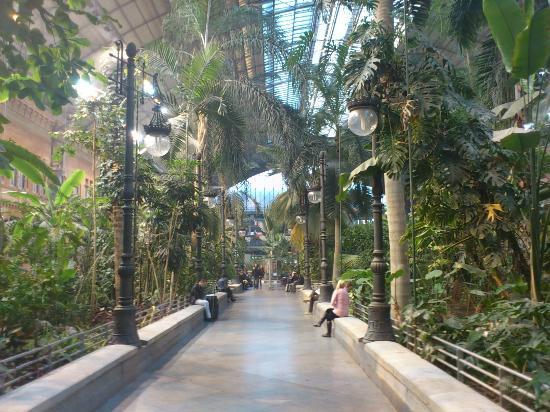 Jardin tropical dentro de la antigua estacion de atocha picture of estacion de atocha madrid - Jardin tropical atocha ...