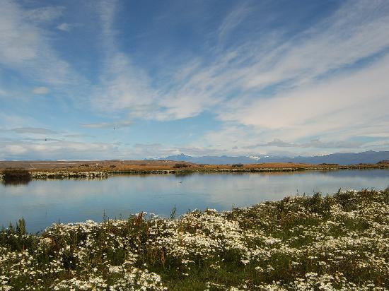 Ελ Καλαφάτε, Αργεντινή: Laguna Nimes