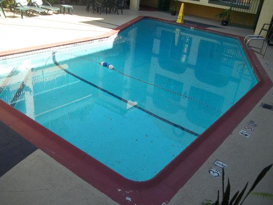 Quality Inn Hollywood: Dirty pool.
