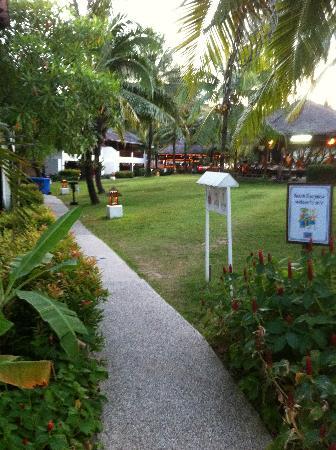 Sunwing Kamala Beach: accés a la plage