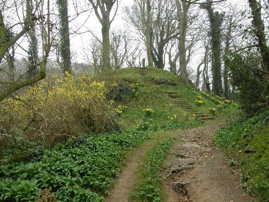Bishopscourt Glen: Mount Aeolus