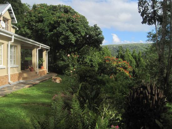 Porcupine Ridge Guest House: Blick auf die Terrasse