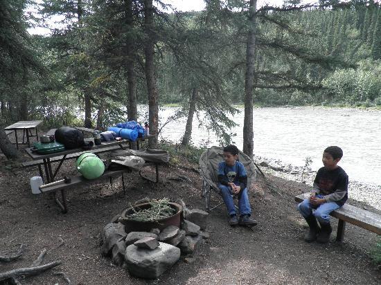 Denali Grizzly Bear Resort照片