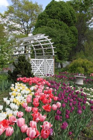 The Wedding Garden At Queens Botanical Garden