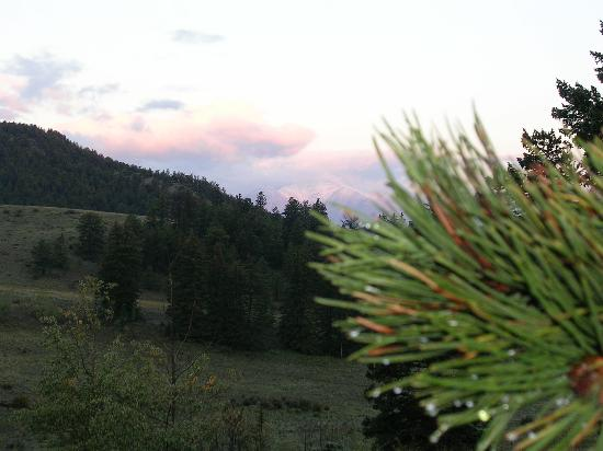Elk Mountain Ranch: Dewdrops and sunrise